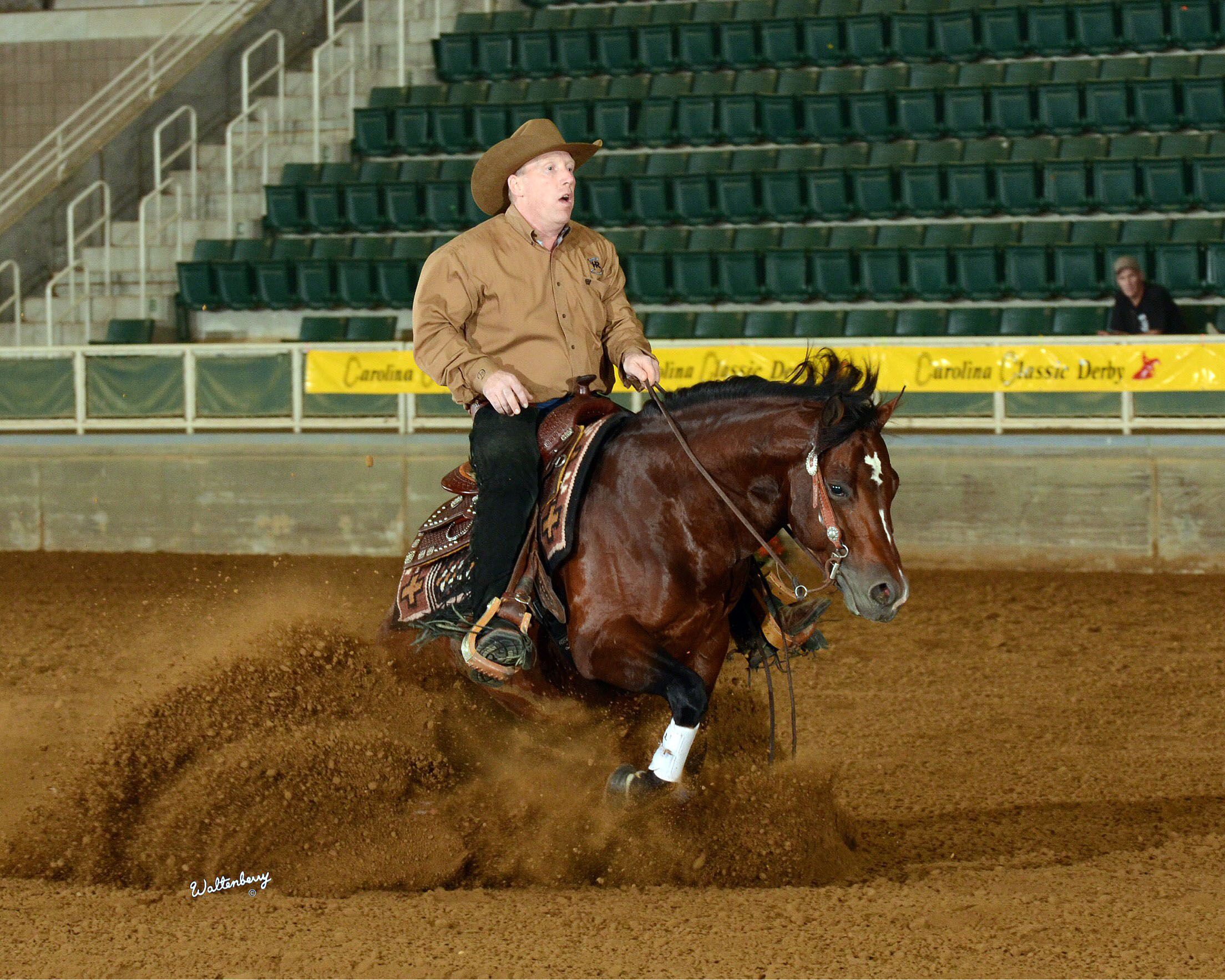 Kenora Rider Going For Gold At World Equestrian Games Brantford Expositor