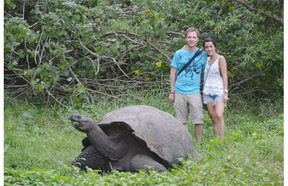 My wife and I with a giant tortoise in the Galapagos.