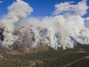 The Sawback area in Banff National Park has nearly been returned to its historic state due to prescribed burns. Three of the burns are planned this year in Banff National Park.