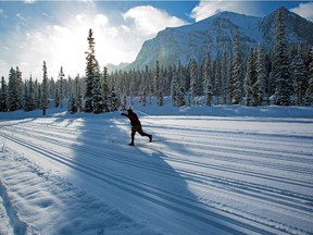 A skier on cross-country ski trails near the Chateau Lake Louise in January 2013.