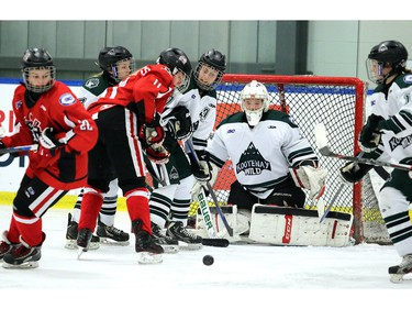Wild goalie Catlalina Hartland has a net full of trouble as the Northern Capitals were played the Kootaney Wild on December 28, 2015 in the Mac's Midget Tournament rink 2.