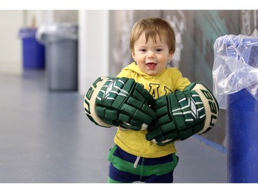 Matteo Amantea, 14 months has a pretty big pair of gloves to grow into. He was waiting for his dad who was one of the coaches of the Calgary Northstars who were playing the Sherwood Park Kings at the Max Bell Centre arena one on December 28, 2015.