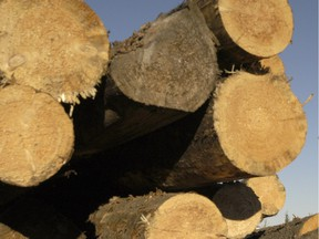 Substantial tariffs on Alberta forestry products in Japan, Vietnam, Malaysia, Australia and New Zealand? Gone under the proposed deal.