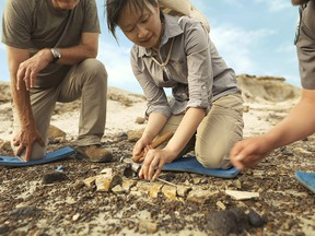 At Dinosaur Provincial Park adult paleontological programs allow participants to go on real excavations.