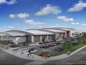 Renderings of the $200 Million dollar Asian-themed New Horizon Mall being built near CrossIron Mills just north of Calgary. Handout Image