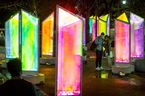 A couple checks their camera inside the Prismatica art installation at Olympic Plaza in Calgary, Alta., on Thursday, Feb. 16, 2017. The temporary display of about two dozen two-metre-high rainbow towers is a precursor to the inaugural GLOW Winter Light Festival happening over the Family Day weekend. Lyle Aspinall/Postmedia Network