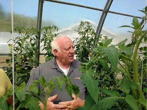 Horticulturalist Michael Stewart in his greenhouse at Fox Harb'r. Photos by Tom Keenan.