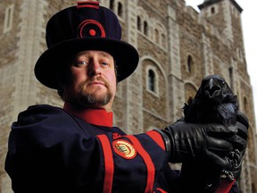 After a 24-year career in the British Army, Christopher Skaife became the Tower of London's ravenmaster.