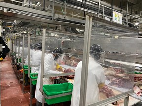 The JBS plant showing the rib and chuck line with the added plastic partitions between the employees at the Brooks plant.
