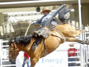 Alberta needs to get back on the saddle, says columnist Chris Nelson.
