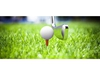 Game in a golf on a beautiful green grass ORG XMIT: POS1705081254480102 ORG XMIT: POS1706191632259006