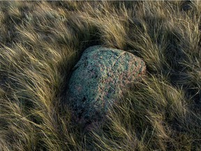 A glacial erratic surrounded by fescue grass on the prairie north of Buffalo.