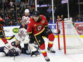 The Stockton Heat's Ryan Lomberg is on pace to shatter his career high in points in an AHL campaign.