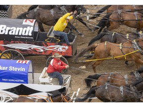 Obrey Motowylo and Troy Flad battle to the finish in Heat 2 of the Rangeland Derby chuckwagon races at the Calgary Stampede in Calgary, Ab., on Sunday, July 7, 2019. Mike Drew/Postmedia