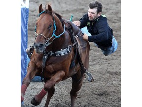 Team Marc Andra Potvin and Maxime Clermont compete in a horse exchange where cowboys attempt to switch horses their riding on race at the Calgary Stampede's Broncs After Dark rodeo event.