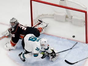 San Jose Sharks centre Logan Couture, right, scores past Anaheim Ducks goaltender John Gibson during the first period of Game 2 of an NHL hockey first-round playoff series in Anaheim, Calif., Saturday, April 14, 2018. (AP Photo/Chris Carlson)