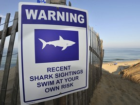 A sign warns visitors to Long Nook Beach of recent shark sightings, Wednesday, Aug. 15, 2018 in Truro, Mass. (Merrily Cassidy/The Cape Cod Times via AP)