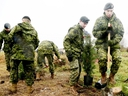 The Canadian Armed Forces and local volunteers plant 300 trees on the former site of Camp X in Whitby, Ont., as part of the Highway of Heroes Tree Campaign on Friday November 2, 2018. (Veronica Henri/Toronto Sun/Postmedia Network)