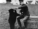 Archive photo shows Lt. Harry Colebourn, a veterinarian, feeding the bear cub he adopted near White River, Ont., and named Winnie in honour of his hometown of Winnipeg.