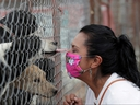 Pet adopter Mary Carmen Arreguin, 41, gestures to dogs behind a fence at San Gregorio animal shelter in El Ajusco, Mexico April 24, 2020.