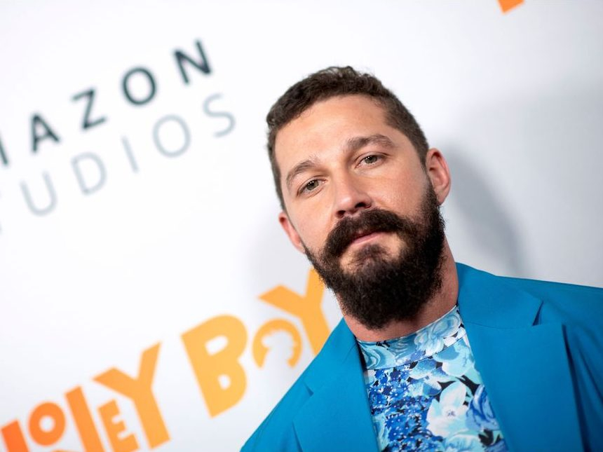 Shia LaBeouf pleads not guilty to battery and theft