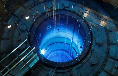 FILE PHOTO: The open reactor with fuel rods are seen in water pool inside nuclear power plant Muehleberg during a yearly revision