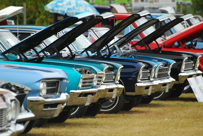An arty shot of the rows of car found at the Westocasters Daze held at Smeiahmoo park in White Rock.