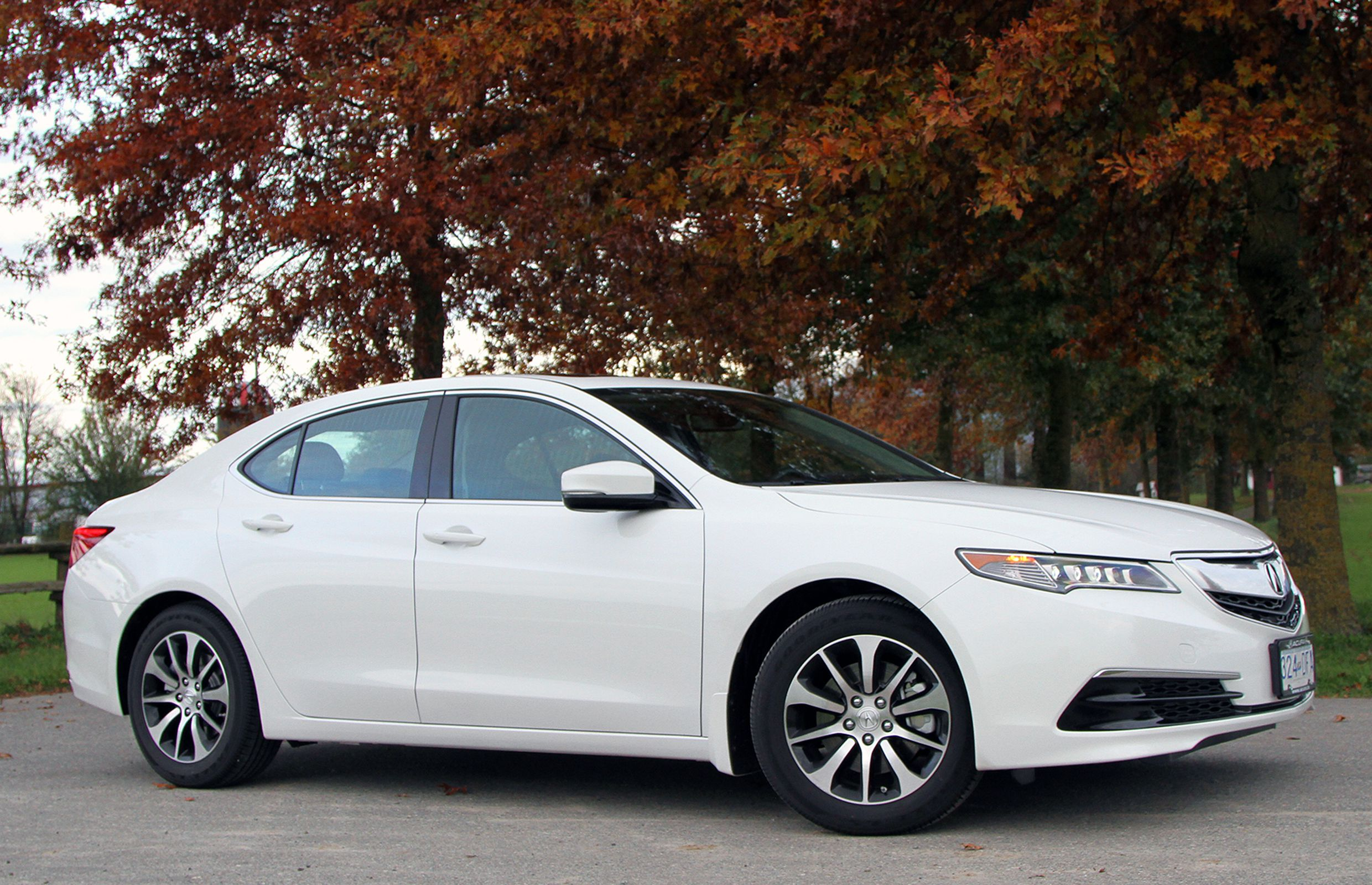 ACURA_TLX_FrontAngleTrees.jpg