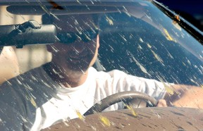 No doubt, bug splatter is a nuisance of summer driving. But they can be an even bigger nuisance to clean.
