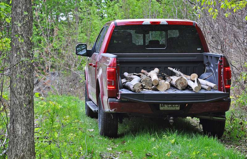 The 2015 Ford F-150 hauls some wood.