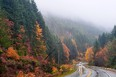 A fresh road trip with autumn colors in Vancouver Island, Canada.