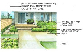 Our landscape expert Donna Brown offers tips on how to transform a dirt backyard.