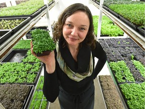 Chef Brittany Watt has a thriving business called Harvest Micro-Greens that she runs out of her garage on the north side.