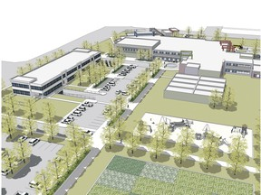 Qualico's proposal has a public library and skating rink at the top left, school entrance to the right, temporary classroom space in the foreground that could be converted to seniors housing.