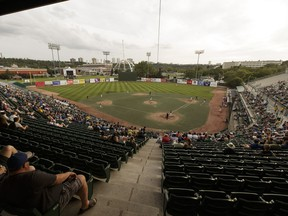 Fans watch from the stands during a playoff game between the Edmonton Prospects and the Okotoks Dawgs at Telus Field in Edmonton on Aug. 2, 2016. The ball park will now be known as RE/MAX Field.