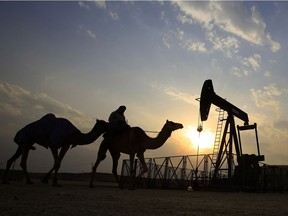 In this 2015 file photo, a man rides a camel through the desert oil field and winter camping area of Sakhir, Bahrain. OPEC nations have agreed in theory that they need to reduce their production to help boost global oil prices during a meeting in Algeria, but a major disagreement between regional rivals Saudi Arabia and Iran still may derail any cut.