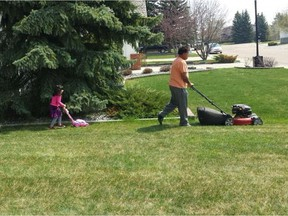 Cutting your lawn short before winter arrives can prevent matting or rot in the spring.
