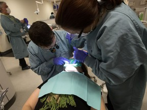 Third-year dentistry student Benjamin Hughes (left) and dental hygienist Sandra Bergeron work on patient Cheryle Lezarre at the University of Alberta School of Dentistry, in Edmonton on Thursday, Dec. 8, 2016. The provincial government has announced that it is going to create a public dental fee guide.