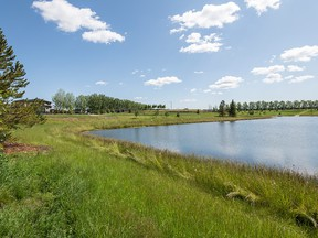 In Creekwood Collections, you can find what works for you. This South Edmonton neighbourhood has all the amenities of a flourishing, mature community, but you can build or buy a brand new home.