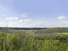 The location of the proposed solar farm at the E.L. Smith water treatment centre. This view is looking west from a recreational trail across the river.