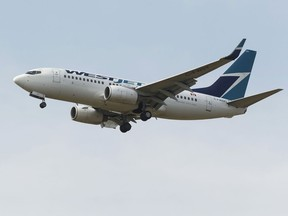 A Westjet Boeing 737-700 aircraft lands at Edmonton International Airport in Nisku, Alberta. File photo.