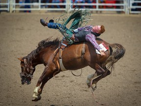 Linden Woods of High River, Alberta, rides Double Dippin' to a score of 81.5 in Day 5 of the Calgary Stampede rodeo bareback event on Tuesday, July 9, 2019. Al Charest / Postmedia