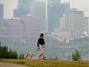 A girl walks her dog on Strathearn Crescent in Edmonton on Monday July 19, 2021. The air quality health index in the city was rated high risk and residents were advised to take precautions and stay indoors if possible.