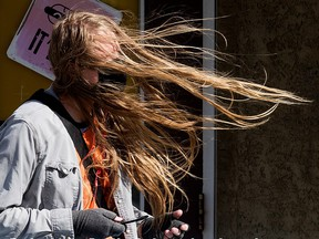A transit rider is buffeted by the wind as they wait for a bus near 86 Avenue and 109 Street in Edmonton, Thursday Sept. 16, 2021. Photo by David Bloom