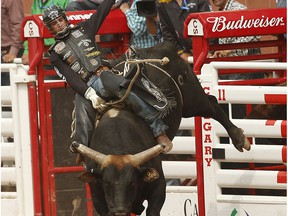 Aaron Roy of Yellow Grass, ,Sask., hangs on tight to a Bull named Nearly Departed during Day 4 at the Calgary Stampede rodeo in Calgary, Alta. on Monday July 6, 2015.