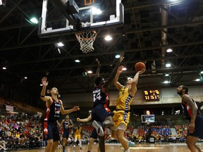 Edmonton Stingers forward Jordan Baker (8) is fouled by Fraser Valley Bandits' Clint Robinson (44) at Northlands Expo Centre in Edmonton on Aug. 1, 2019.