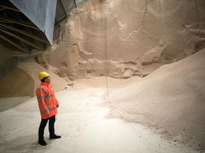 An employee looks at soybean meal produced by Glencore Plc as it is stored before transportation in a grain flat storage at the European Bulk Services (E.B.S.) terminal at the Port of Rotterdam in Rotterdam, Netherlands, on Tuesday, April 25, 2017. Since taking over Glencore Agriculture in 2002, Chris Mahoney has overseen the transformation of the unit into a standalone enterprise that generates more revenue from owning fixed assets in strategic locations than simply trading.