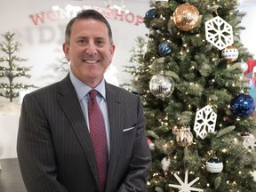 FILE - In this Tuesday, Oct. 25, 2016, file photo, Target Chairman and CEO Brian Cornell poses with a Christmas tree during a media presentation in New York. Cornell says he's optimistic about the 2017 holiday season and consumer confidence, and still sees lots of opportunities in retail. (AP Photo/Mark Lennihan, File)