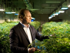 """Aurora Cannibas Inc CEO Terry Booth says the $250-million deal is """"the largest traditional debt facility in the cannabis industry to date."""""""
