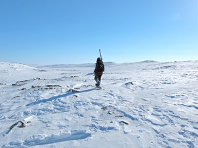 A December 2011 handout photo of Peregrine Diamonds'  team member conducting a ground geophysical survey at the Chidliak project, Nunavut.